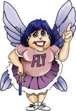 flyady