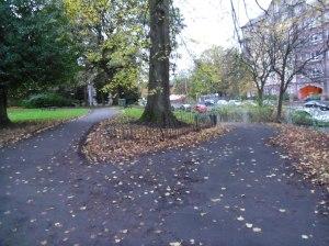 kettéváló út a Cross parkban