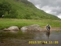 Loch Lomond & Trossachs Nemzeti Park